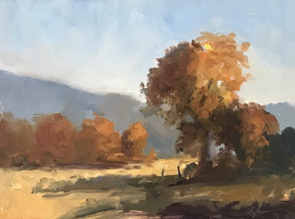 An original oil painting of a landscape titled Fall Trees by Kelli Folsom