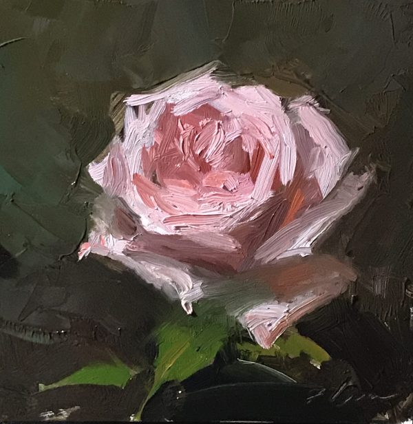 An original oil painting of a still life titled Pink Rose by Kelli Folsom