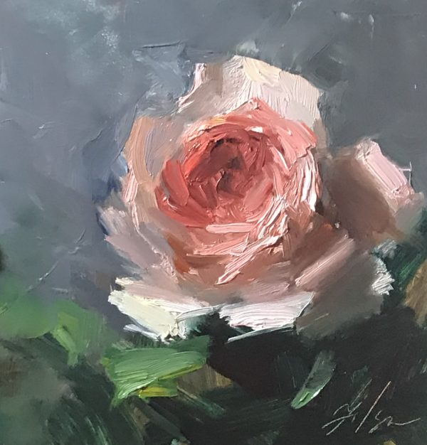 An original oil painting of a still life titled Peachy Keen Rose by Kelli Folsom
