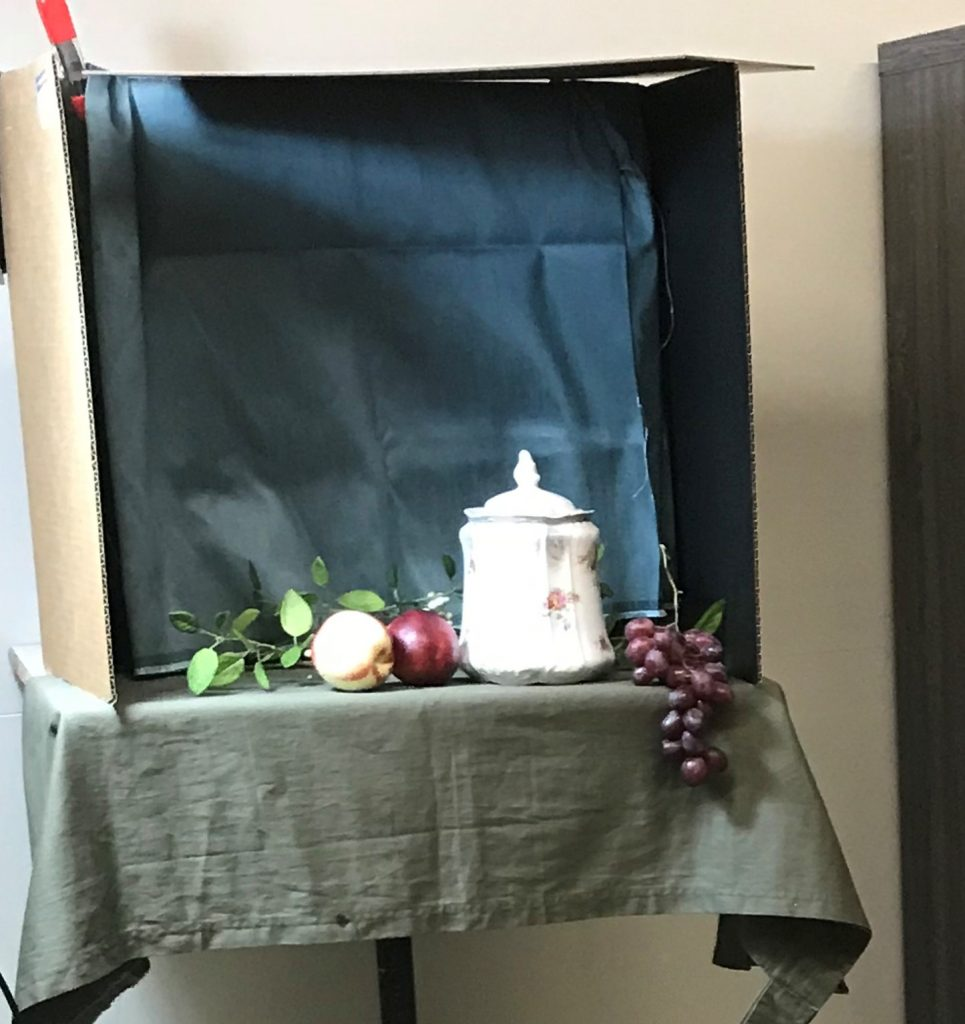 Painting Limoges Jar and Nectarines Set Up Image
