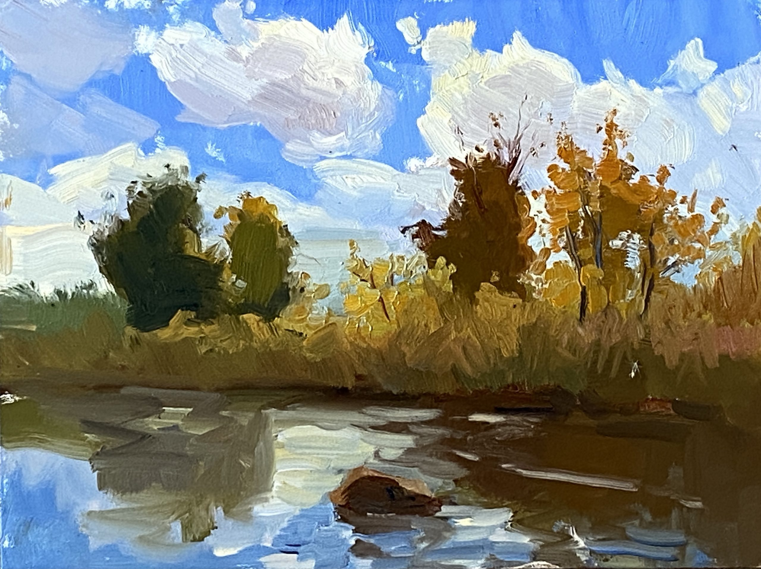 More time in Nature and My Landscape Influences